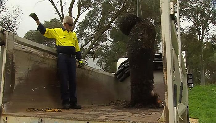 Таким образом машина с краном подбирает мешки с мусором (Kwinana, Австралия).