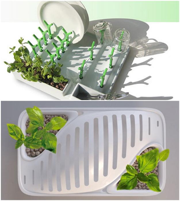 Этот комбинированный кухонный гаджет позволяет и высушить посуду, и вырастить зелень.