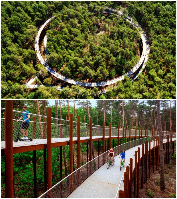 Велопрогулка над кронами деревьев – идеальный аттракцион для любителей активного отдыха (Борглун, Бельгия). | Фото: pragmatika.media/ worldlandscapearchitect.com.