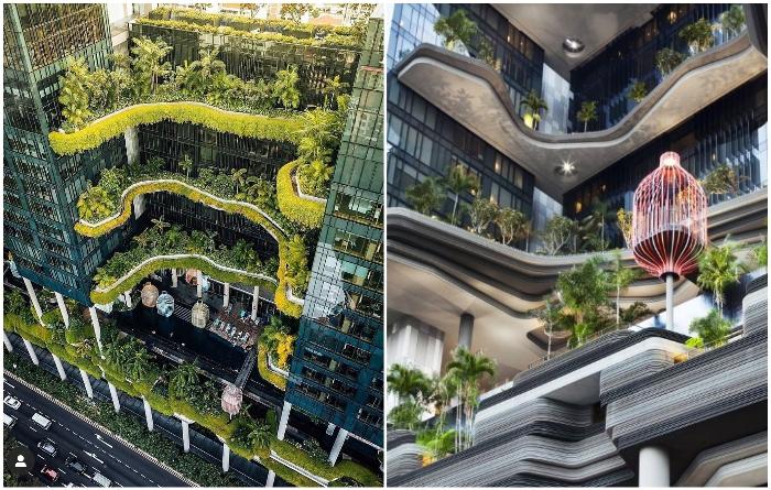 Проект городской гостиницы «Parkroyal on Pickeringв» с вертикальным озеленением реализовало архбюро WOHA (Сингапуре). | Фото: hvoya.wordpress.com/ facebook.com.
