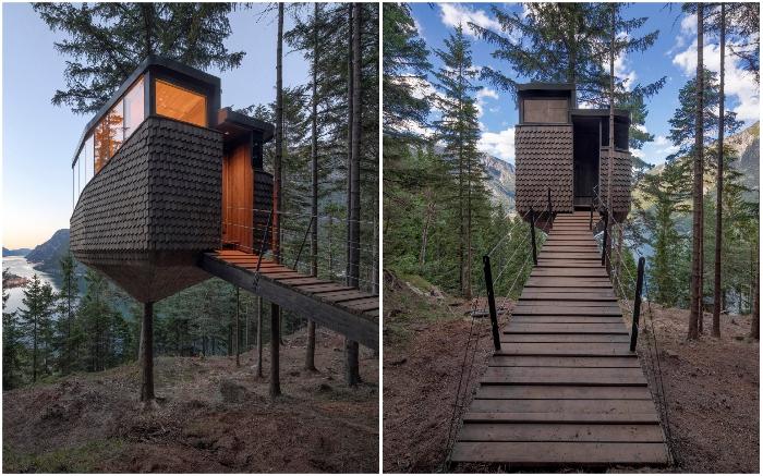 Гостю стоит лишь подняться по деревянному мостику, и он попадет в изысканный номер, созданный вокруг живой сосны (Woodnest, Одда). © Sindre Ellingsen.