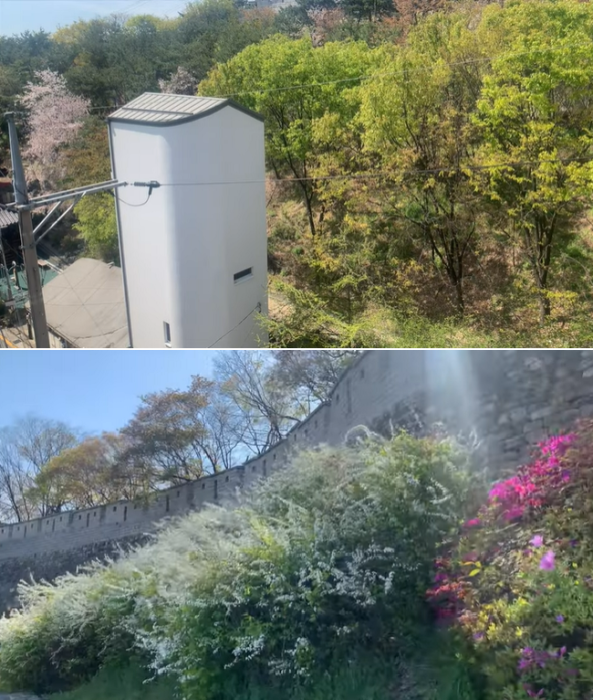 Живописное месторасположение с развитой инфраструктурой компенсировали крошечные размеры участка (Seroro House, Сеул). © Jayne's Wine House.