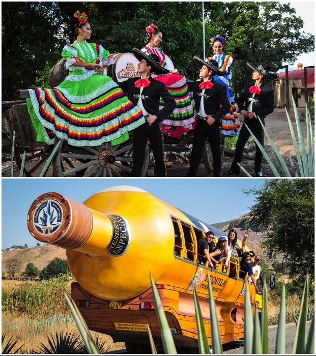 Гостей отеля ждут феерические представления и незабываемые путешествия («Matices Hotel de Barricas», Мексика).   Фото: apartmenttherapy.com.