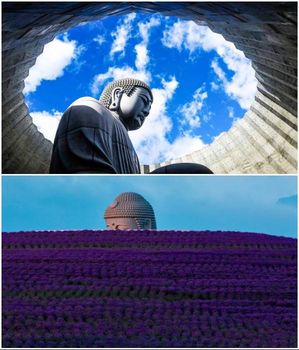 Огромных размеров каменная статуя внутри храма окружена 150 тыс. кустами лаванды. | Фото: veetrina.ru/ interestingengineering.com.