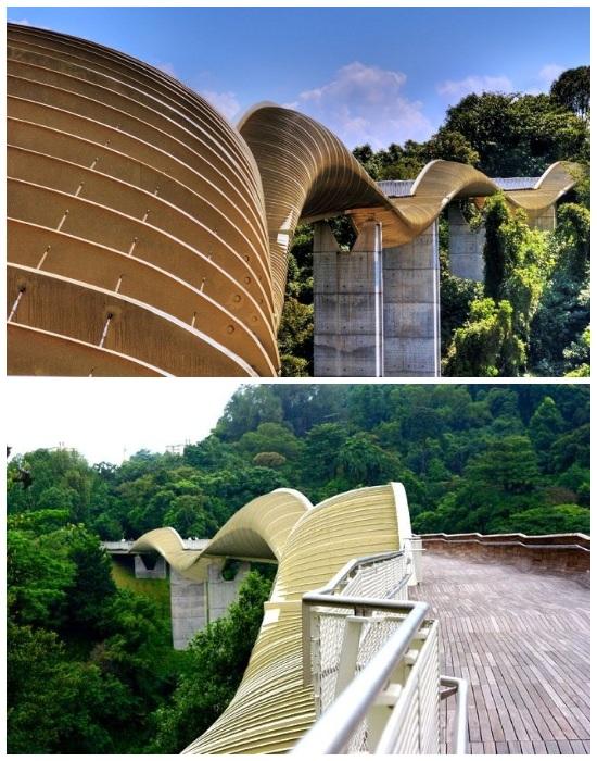 Одна сторона моста полностью закрыта, зато  с другой открывается великолепный вид (Пешеходный мост «Волны Хендерсона», Сингапур).
