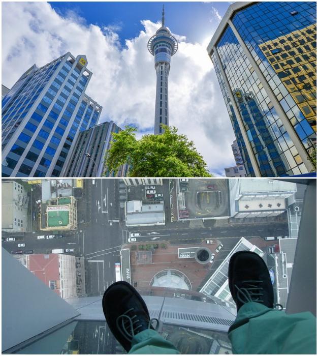 Стеклянный пол в лифте и на смотровой площадке – главные развлечения для экстремалов (Sky Tower, Новая Зеландия).