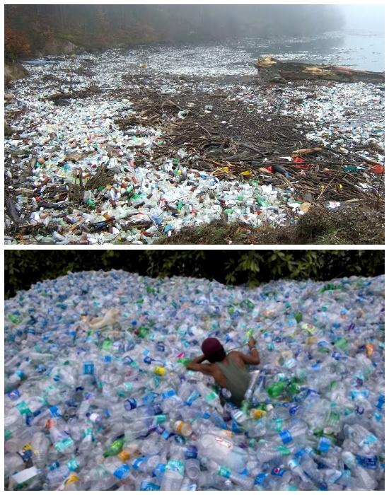 За полтора года волонтеры во главе с Робертом Безо собрали более миллиона бутылок и очистили все пляжи (о. Бокас-дель-Торо, Панама). | Фото: youtube.com.