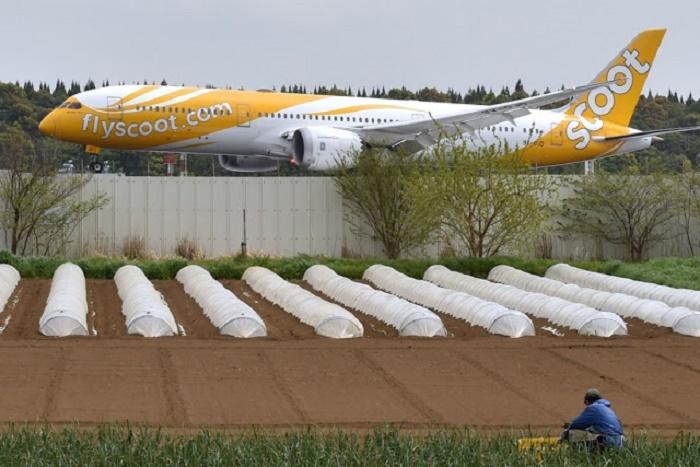 Более 40 лет японский фермер упорно выращивает овощи ...посреди центрального аэропорта Токио (Narita international airport, Япония). | Фото: amazingcoolpictures.blogspot.com.