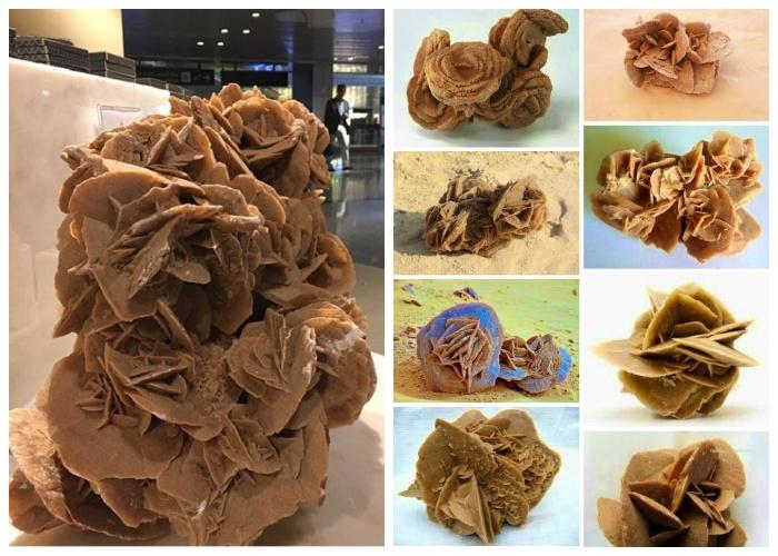 «Роза пустыни» («роза песков») — народное название, обозначающее одну из морфологических разновидностей минерала гипс. | Фото: style.nv.ua.
