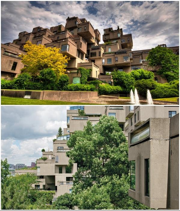 По прошествии стольких лет не только вся территория утопает в зелени, уже и на крышах квартир выросли настоящие сады («Habitat 67», Монреаль). | Фото: focus-maison.com/ architecturaldigest.com.