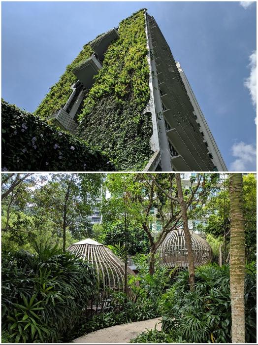 Живые растения занимают площадь около 3 тыс. кв.м. («Tree House», Сингапур). | Фото: uno-propiedades.com.ar/ stackedhomes.com.