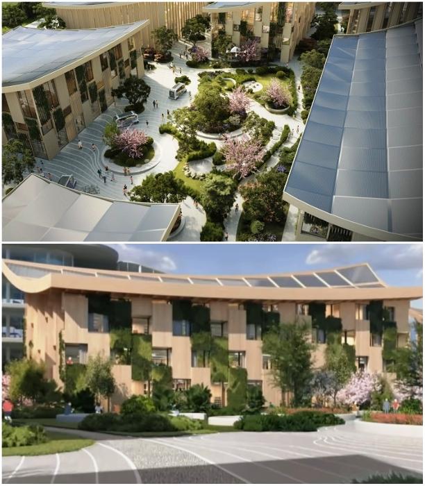 Все дома сделают из экологически чистой древесины и будут оснащены солнечными батареями (концепт «Woven City»). | Фото: newatlas.com/ youtube.com, © CNET Highlights.