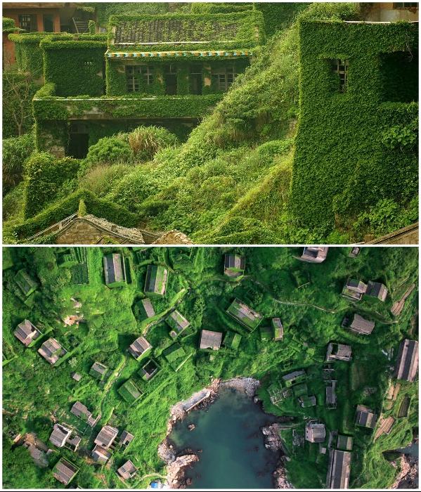 Поглощенная роскошной зеленью рыбацкая деревня снова привлекает людей (Houtouwan, Китай). | Фото: pridiord.blogspot.com/ © Jane Qing.