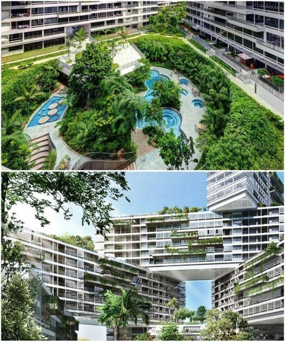 Огромное количество зеленых насаждений создает идеальный микроклимат на территории ЖК «Interlace» (Сингапур). | Фото: thepeakmagazine.com.sg.