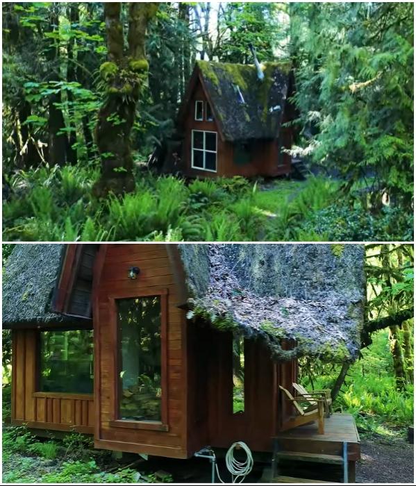 Большие окна стали дополнительным украшением сказочной избушки.   Фото: youtube.com/ © Living Big In A Tiny House.