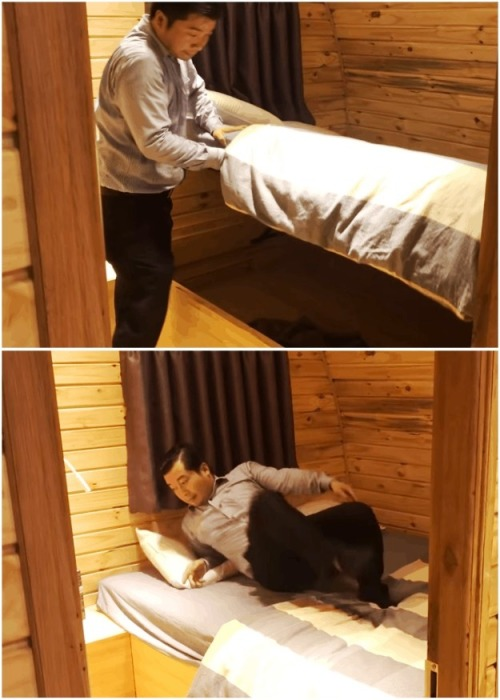 В домике удалось сделать изолированную спальную комнату. | Фото: cpykami.ru.