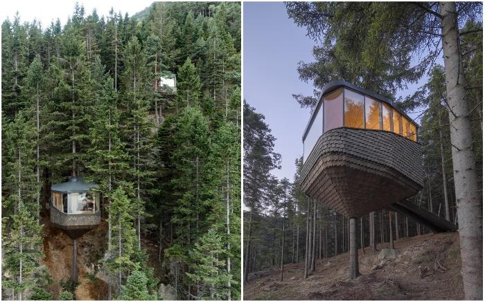 В Норвегии открылся отель, номера которого «обнимают» огромные сосны (Woodnest, Одда). © Sindre Ellingsen.