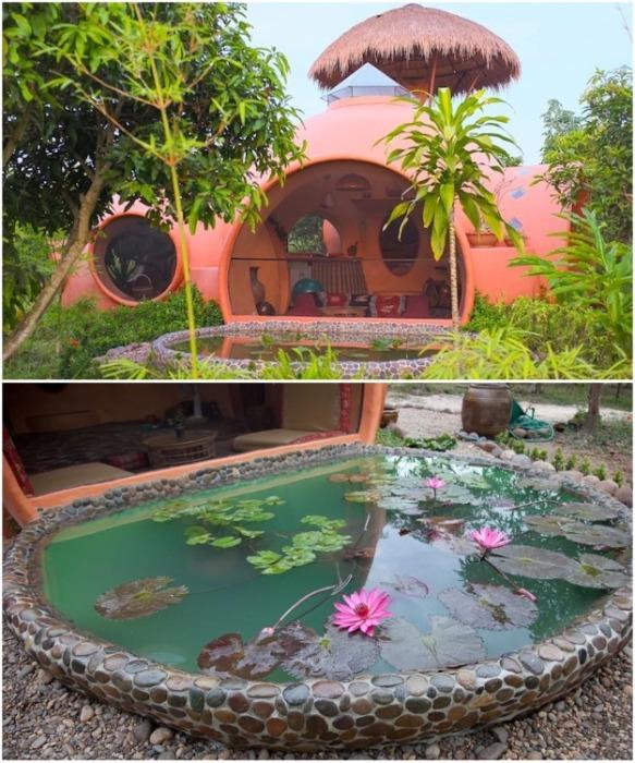 Во внутреннем дворе нашлось место и для небольшого пруда, в котором посадили красивые растения (Earthen Dome Home, Таиланд). | Фото: intelligentliving.co/ ©Steve Areen.