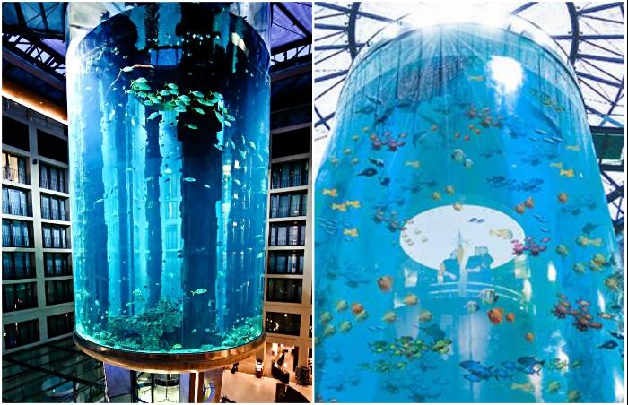 Лифт AquaDom находится внутри гигантского аквариума (Берлин, Германия).