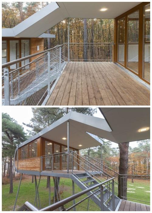 Оригинальные террасы и переходы украшают всю конструкцию TREEHOUSE (Бельгия).