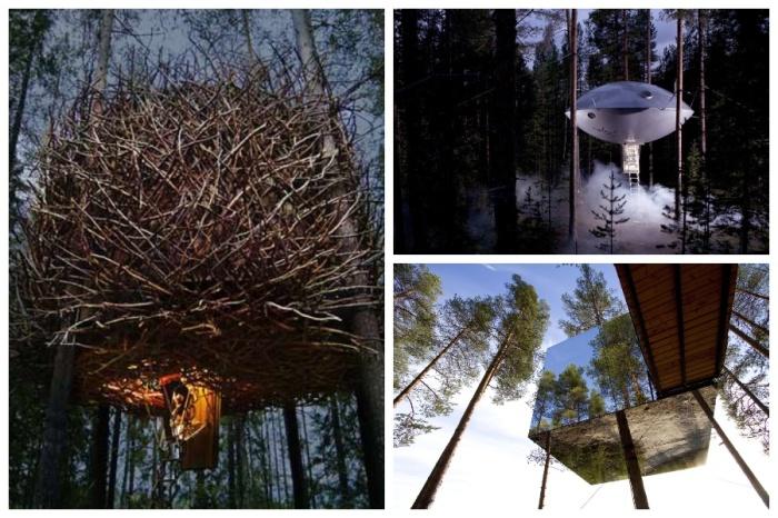 Уникальные номера гостиничного комплекса Treehotel размещены на деревьях среди живописного леса (Швеция).