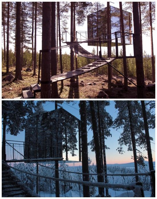 Бунгало «Mirrorcube» имеет полностью зеркальный фасад (эко-отельTreehotel). | Фото: treehotel.se.
