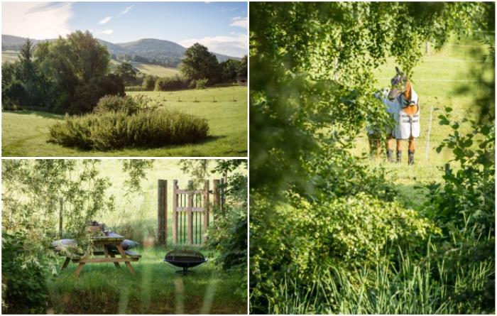 Уединение, тишина и красота окружающей природы – стали притягательны для большинства людей («Wishbone Cottage», Великобритания). | Фото: uniquehomestays.com.