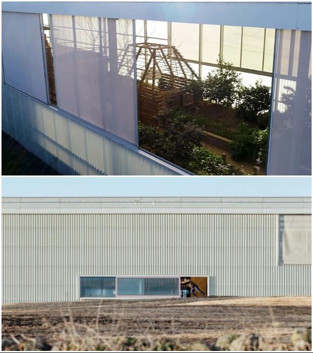 Дом построили из полупрозрачных панелей из полиэстера, армированного стеклом, и имеющего гелевое покрытие («Longhouse», Daylesford).