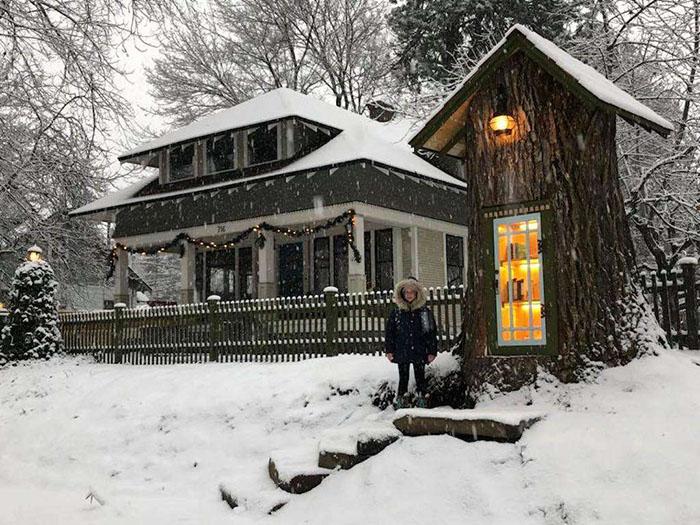 Шерели Армитадж Говард – создательница удивительной библиотеки в стволе старого дерева (Little Free Library, Кер-д'Ален).