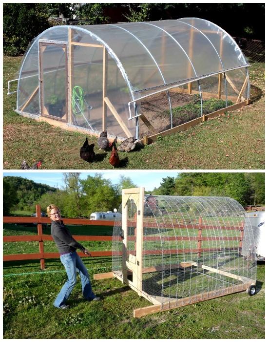 Легкие мобильные инструкции теплиц станут идеальным вариантом для выращивания овощей в весенне-осенний период.