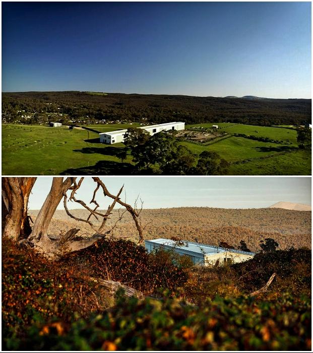 Чтобы избежать капризов погоды и защититься от диких зверей, владельцы земли решили сады и животных спрятать в дом («Longhouse», Австралия).