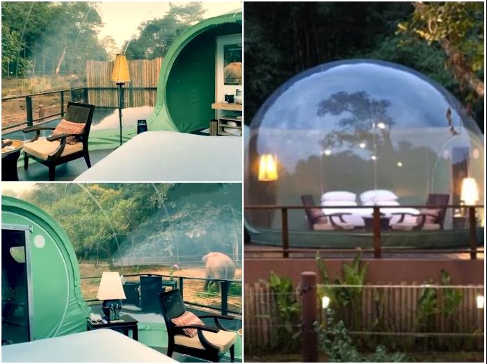 Несмотря на скромность убранства номеров-пузырей, они относятся к классу «Люкс». | Фото: youtube.com/ © Anantara Chiang Rai - Bubble Suites.