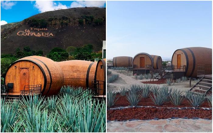 Отель «Matices Hotel de Barricas» расположен неподалеку от города Текила (Мексика).   Фото: travelbaseonline.com/ © maticeshoteldebarricas.