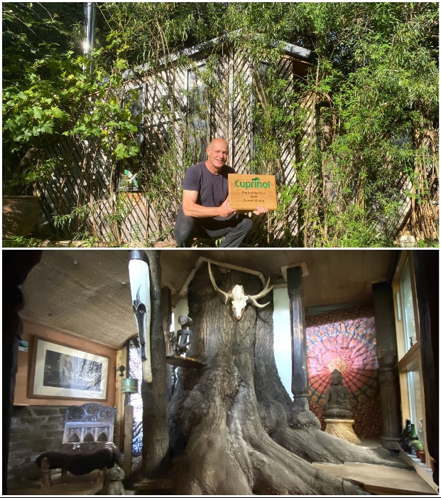 Садовый домик Bedouin Tree Shed стал победителем конкурса Cuprinol Shed of the Year (Лондон, Великобритания).
