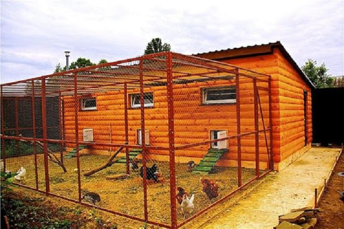 Если планируете выращивать кур круглый год, то без зимнего сарая не обойтись. | Фото: mvkursk.ru.