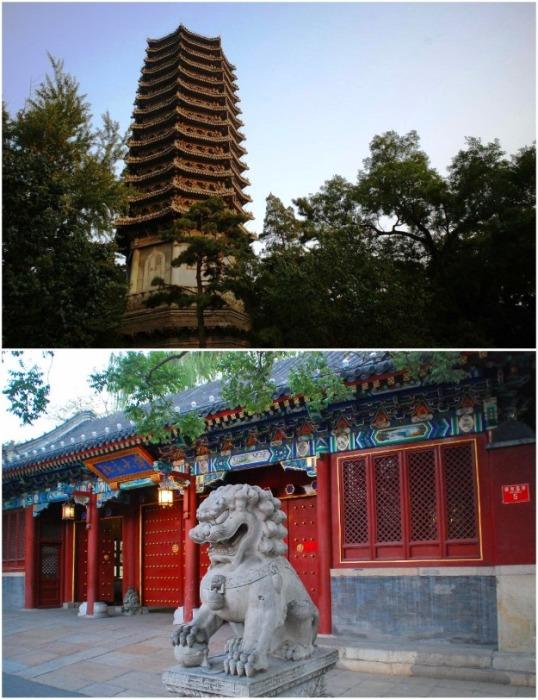 Пекинский университет славится красотой традиционной китайской архитектуры (Peking University , Китай). | Фото: tripadvisor.ru.