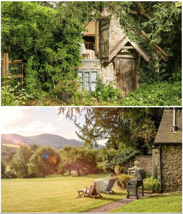 Лесная хижина, построенная еще в XV в., превратилась в популярное место отдыха («Wishbone Cottage», Великобритания). | Фото: uniquehomestays.com.