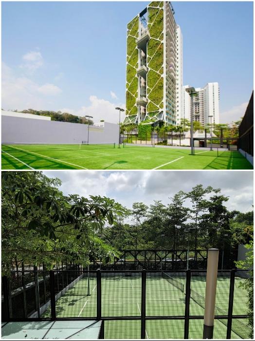Спортивные площадки и корты, расположенные на территории жилого комплекса («Tree House», Сингапур). | Фото: uno-propiedades.com.ar/ stackedhomes.com.