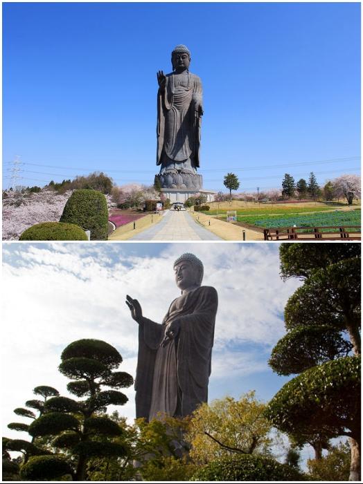 Статуя Будды Усику Дайбуцу в 3 раза выше Статуи Свободы в Нью-Йорке (Усику, Япония). | Фото: japanhoppers.com/ liveinternet.ru.