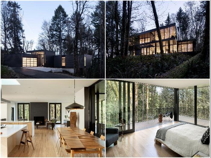 Американские дизайнеры удачно интегрировали загородный дом в овраг (Royal Residence, США).
