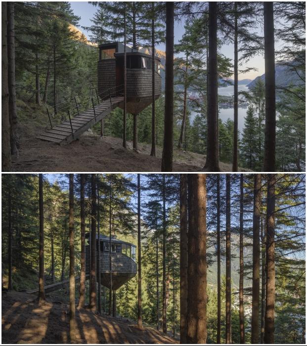 Домик на дереве – идеальное место для уединения и полного слияния с природой (Woodnest, Норвегия). © Sindre Ellingsen.