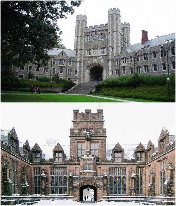 Принстонский университет в Нью-Джерси является главой Лиги плюща, в которую входят 8 университетов (Princeton University, США). | Фото:  theoryandpractice.ru.
