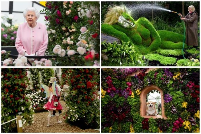 На ежегодном фестивале цветов Chelsea Flower Show присутствует сама королева Елизавета II (Королевский парк, Челси). | Фото: pixmafia.com.