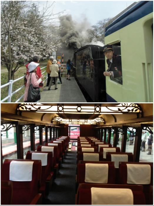 В «зеленом вагоне» расположено 30 откидывающихся кресел для путешествующих, которые можно даже вращать. | Фото: japanvisitor.com/ jreast.co.jp.