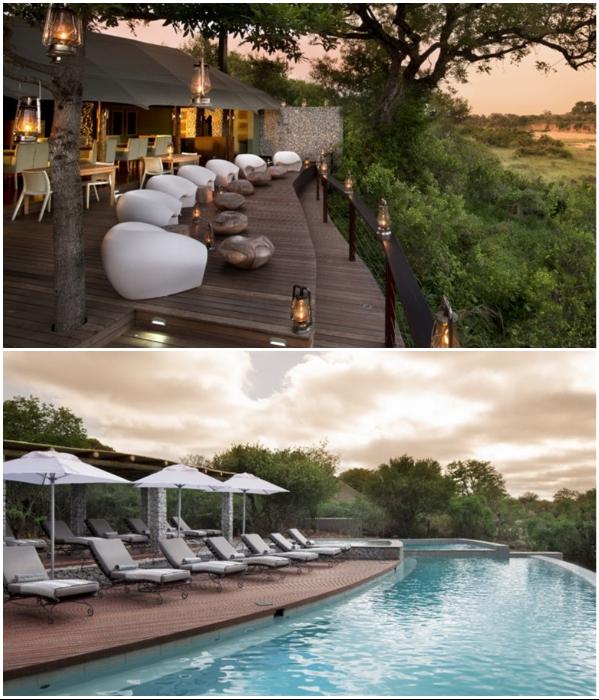 Незабываемый отдых гарантирован и гостям эко-лагеря «Ngala Private Game Reserve» (ЮАР). | Фото: oxfordprivatetravel.com.