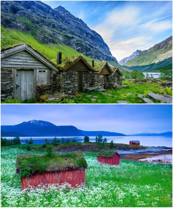 Деревянные срубы на норвежских фьордах. | Фото: pandaznaet.ru.