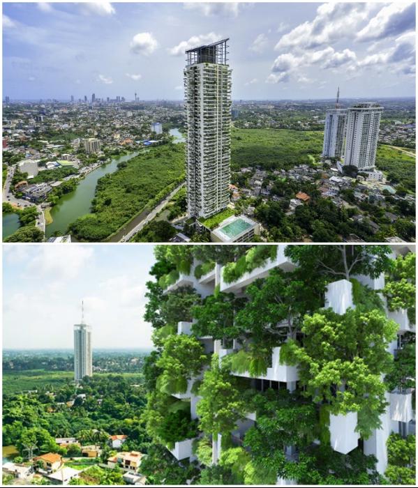 Эко-небоскреб Clearpoint Residencies стал первым вертикальным лесом в Шри-Ланке (Коломбо). | Фото: worldarchitecturenews.com/ builder.lk.