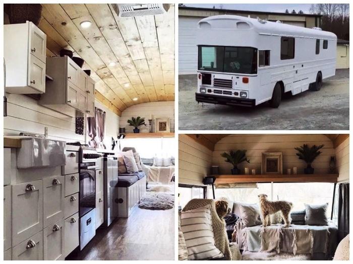 В таком стильном доме на колесах нашлось место для домашнего любимца. | Фото: facebook.com.