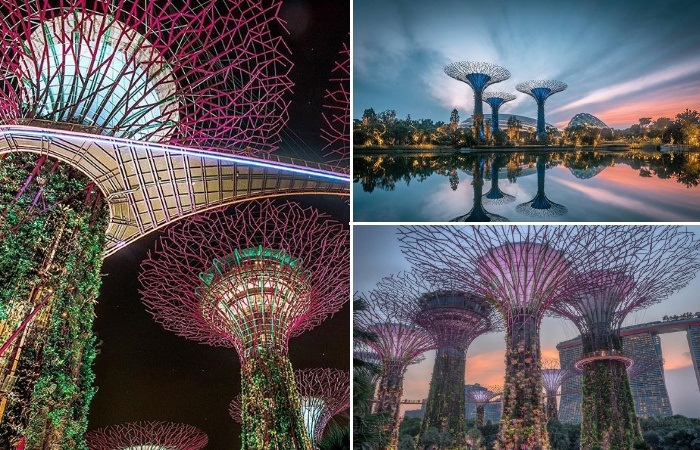 Тропический парк «Сады у залива» в Сингапуре с его футуристическими пейзажами (Gardens by the Bay). | Фото: instagram.com/ Lee Mumford.