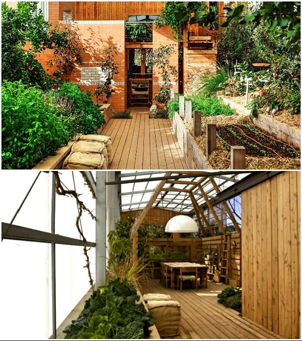 После знакомства с животными гости попадают в сад, который плавно переходит в столовую и кухню («Longhouse», Daylesford).